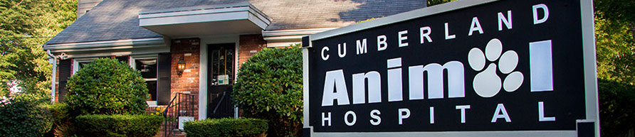 Cumberland Animal Hospital 6 Pound Road Cumberland  RI 02865