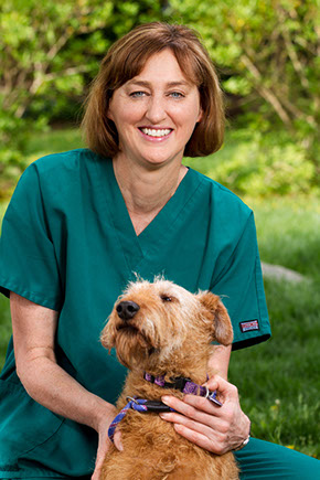 Kathy - Veterinary Technician